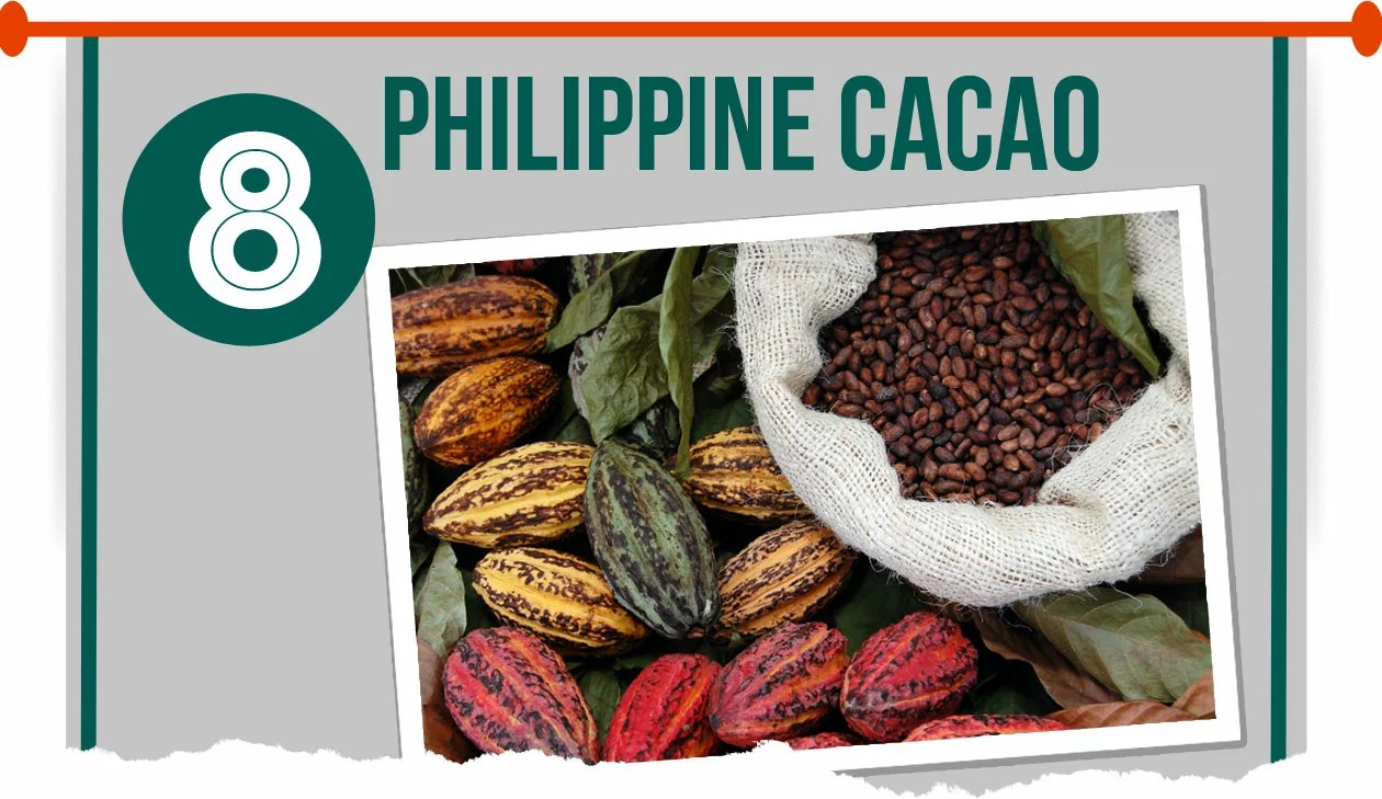 regional-pinoy-foods-8