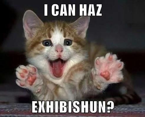 Can i Haz an exibishun