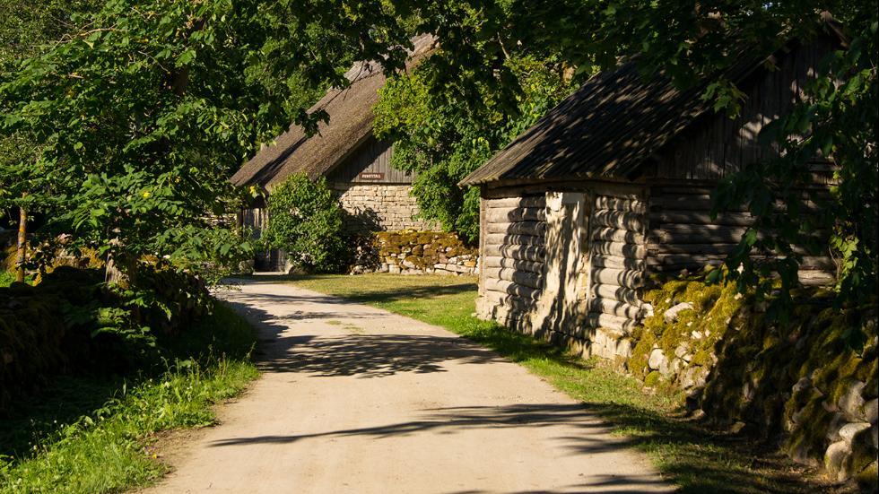 Koguva-Estonia