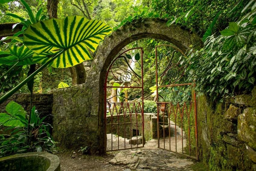 Las Pozas Garden, Mexico ©BarnaTanko123rf
