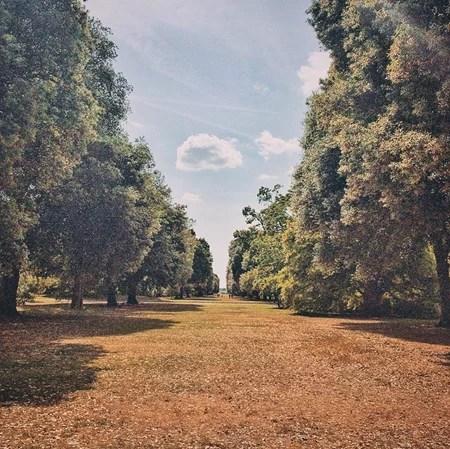 Royal Botanic Gardens 03