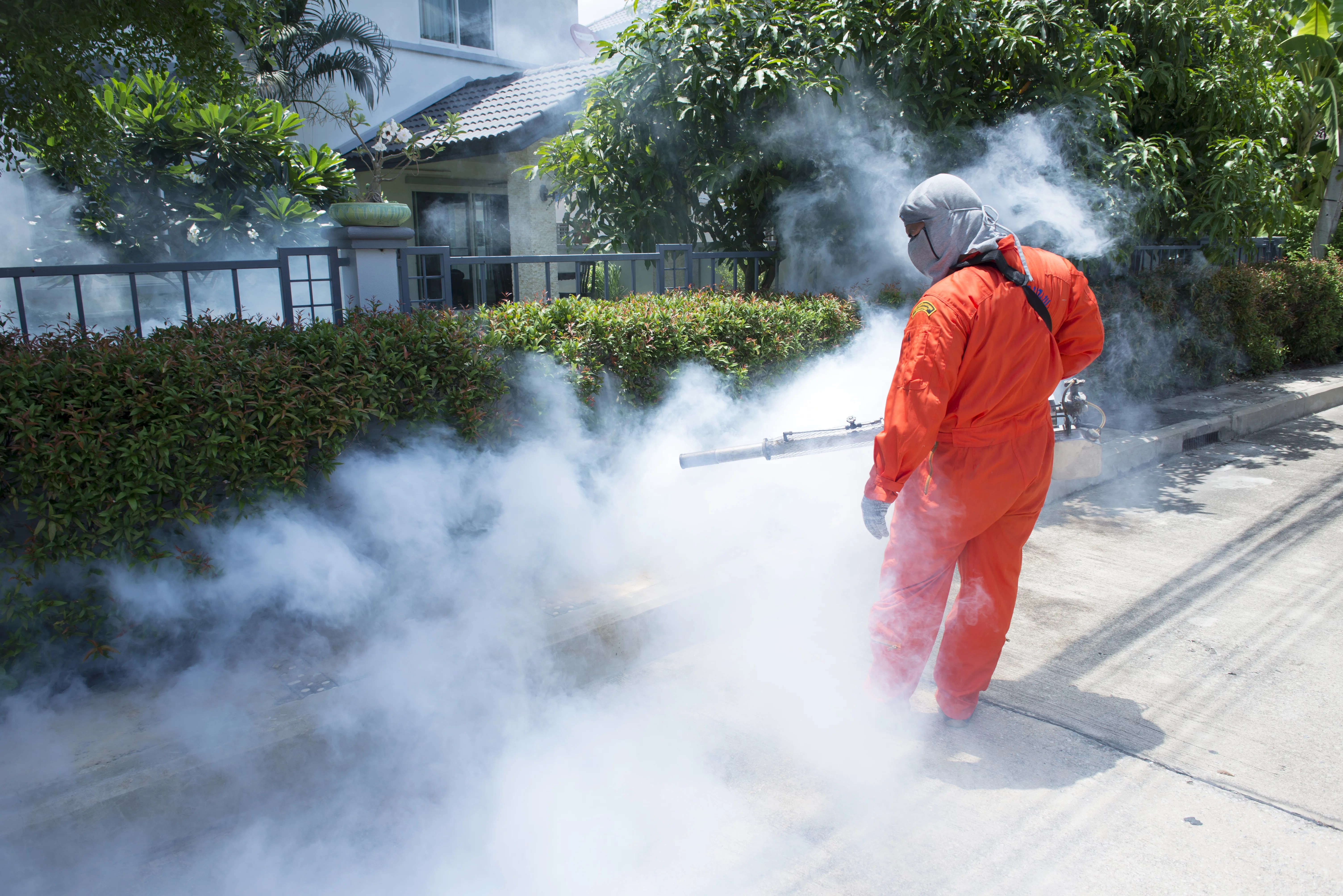 Workers are fogging for dengue control.