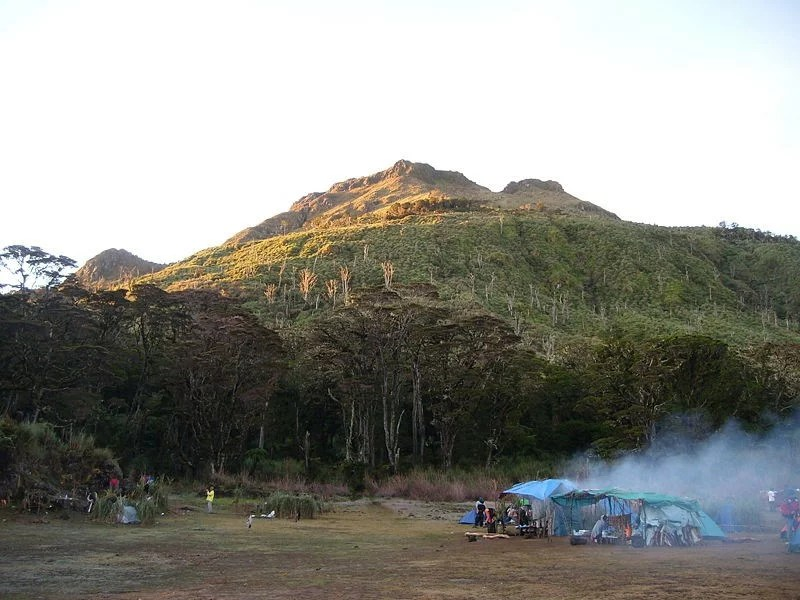 mt-apo-clearing