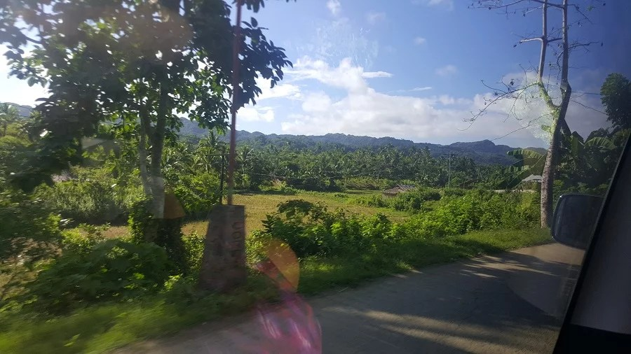road1 (1)