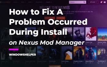 nexus mod manager a problem occurred during install