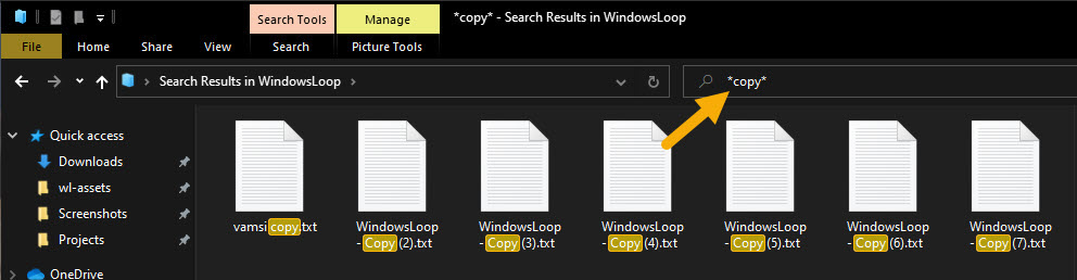 File Explorer search syntax - wildcard