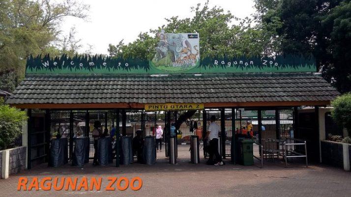Kebun Binatang Ragunan zoo