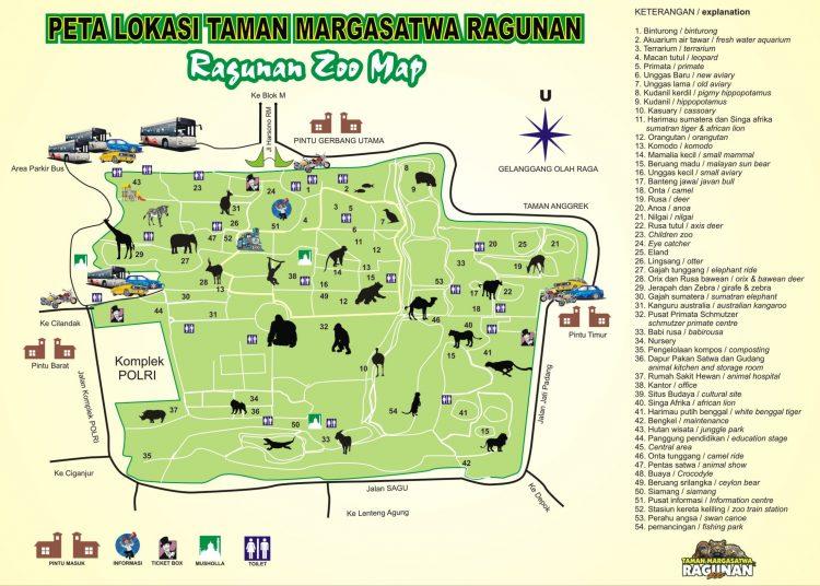Petadi  Kebun Binatang Ragunan