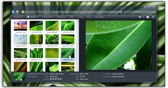 NEXTlevel Green Windows 7 Theme 3rd Party