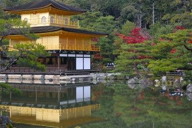 Kyoto: Kinkakuji Golden Pavilion in autumn
