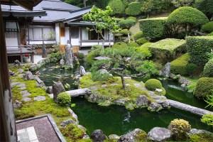 Mt. Koya: garden