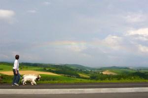 Hokkaido rainbow