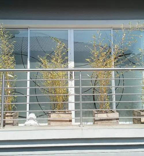 DECORATIVE WINDOW FROSTING 1