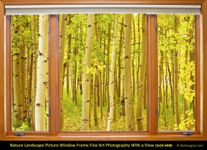 Into the Aspen Picture Window Frame View