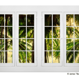 Jungle Plantation Double 16 Pane Window View 32″x48″x1.25″ Premium Canvas Gallery Wrap