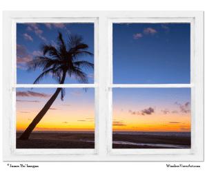 Tropical Window Art Views