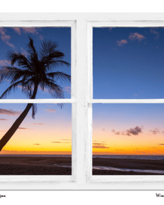 Tropical Window Art Views