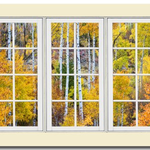 Aspen Tree Forest Cream 24 Pane Window View 32″x48″x1.25″ Premium Canvas Gallery Wrap