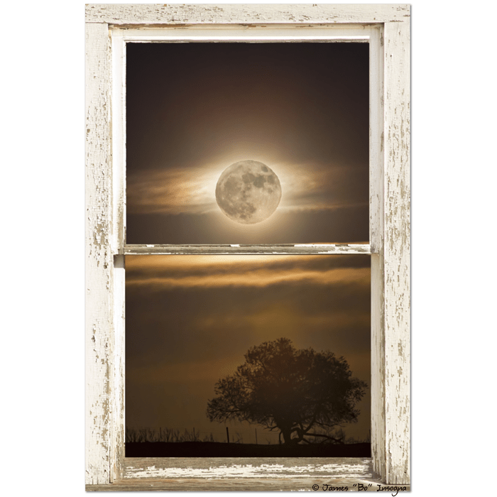 "Supermoon Country Tree Rustic Window View 24""x36""x1.25"" Premium Canvas Wrap Art"