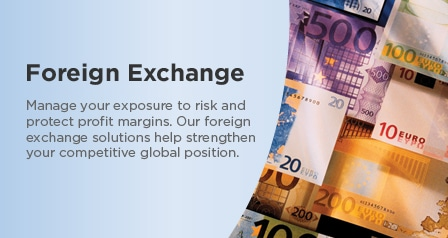 Learn How to Set up a Foreign Exchange account and effectively utilize its standards to taste the success