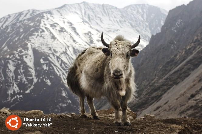 ubuntu-16-10-yakkety-yak-logo