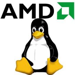AMD-linux-logo
