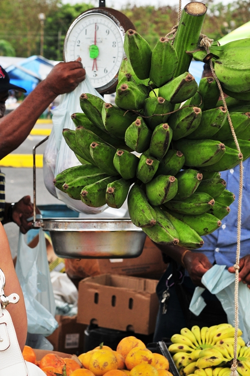 More green plantains