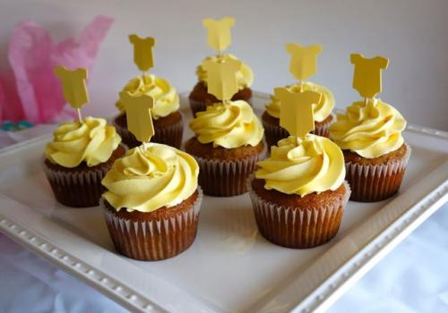 chicago baby shower cupcakes