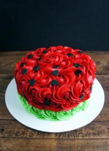 Watermelon Smash cake