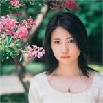 14歳の母 志田未来 あらすじ1/5(ネタバレ) 初回~最終回
