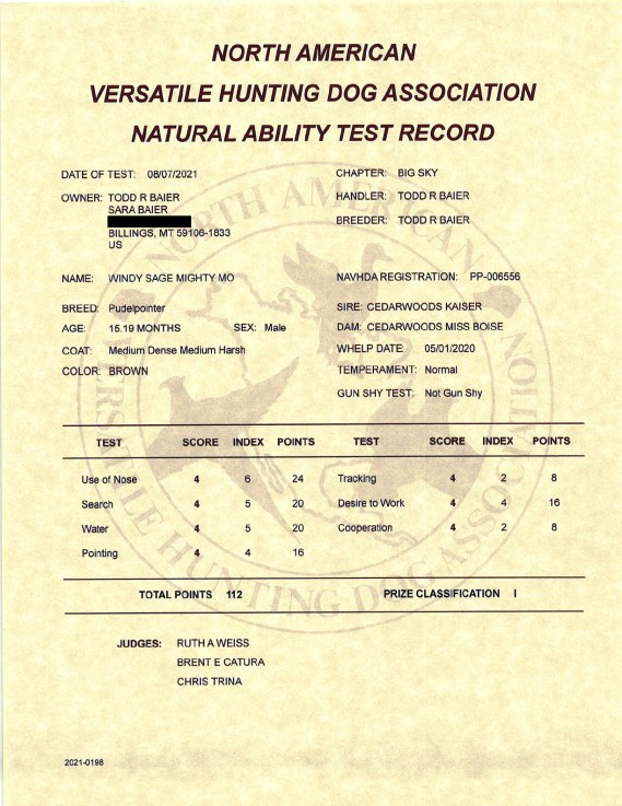 The NAVHDA record of Windy Sage Mighty Mo's Natural Ability Test