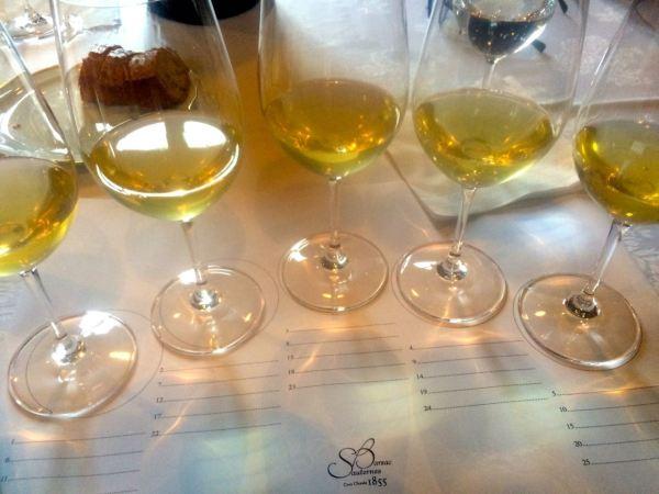 Assessing Sauternes