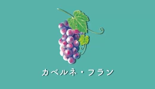 静謐さと品格のカベルネ・フラン|品種の特徴とおすすめワイン