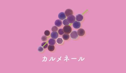 幻のブドウ品種カルメネール|特徴とおすすめワイン