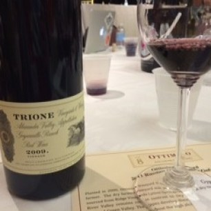 Trione Alexander Valley Red Wine
