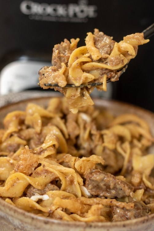 A bowl full of beef stroganoff and egg noodles. There's a forkful of the noodles lifted up out of the bowl.