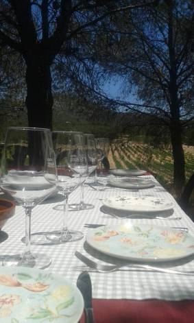 finca_collado_winekana_wineandtwits_vinos-do_alicante