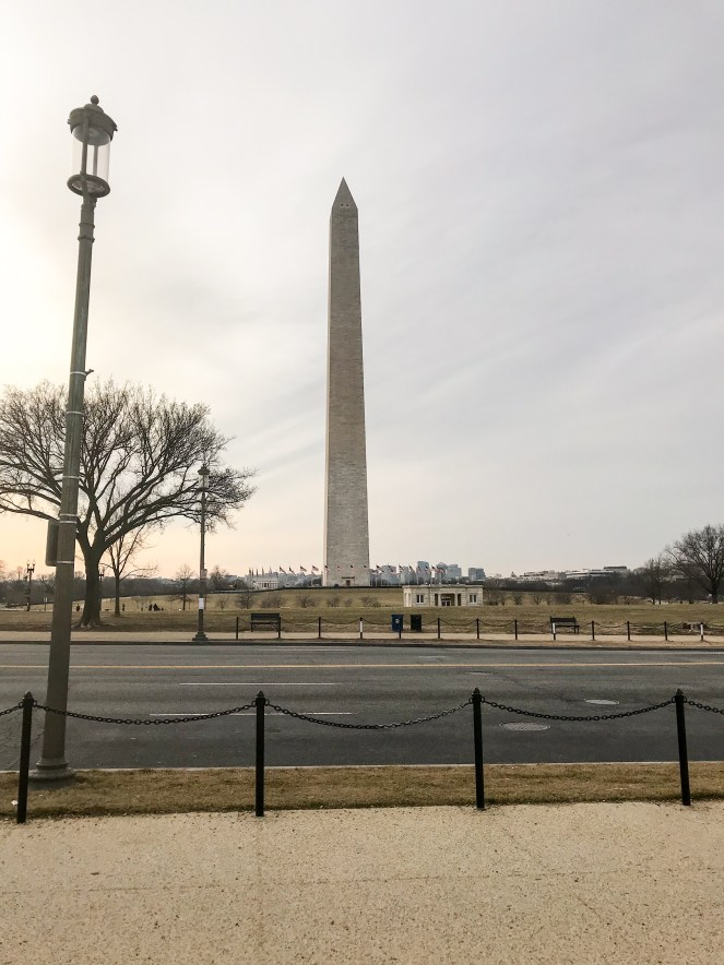 The Washington Monument DC