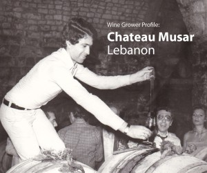Grower Profile; Chateau Musar