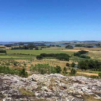 View from Alto de la Ballena in Punta del Este, Uruguay.