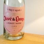 Juvé & Camps, Pinot Noir Brut Rosé Cava, Spain, Wine Casual