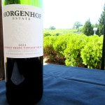 Morgenhof Estate, Cabernet Franc 2013, Simonsberg - Stellenbosch, South Africa, Wine Casual