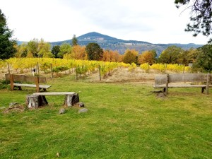 Photo Credit: Wine Casual, Enjoy the view sitting in benches at Cathedral Ridge Winery.