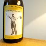 Whetstone Ciderworks, Methode Champenoise Sparkling Cider 2017, Marlboro, Vermont, Wine Casual