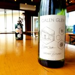 Galen Glen, Grüner Veltliner 2017, Stone Cellar, Lehigh Valley, Pennsylvania, Wine Casual
