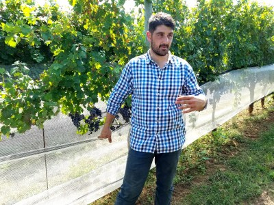 Davide Creato, Penns Woods Winery's assistant winemaker. Wine Casual.