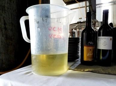 Sirromet Wines, Vermentino, Queensland, Australia, Wine Casual