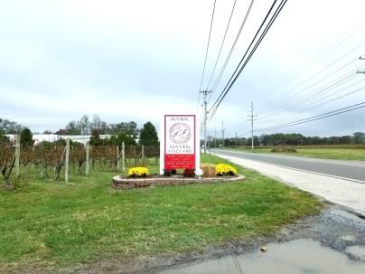 Hawk Haven Vineyard in Rio Grande, New Jersey.  Wine Casual