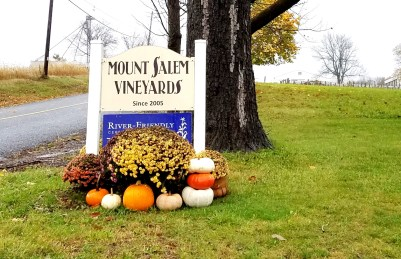 Mount Salem Vineyards is a boutique winery that only produces 1,500 cases of wine a year.  Wine Casual