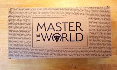 Master the World wine kit box. Wine Casual